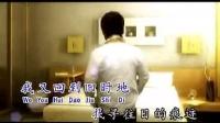 莊學忠 Zhuang Xue Zhong 未完成的戀曲 Wei Wan Cheng De Lian Q