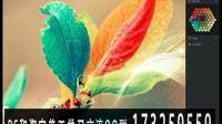 [PS]淘宝美工,平面设计,PS教程,photoshop视频教程,海报制作80