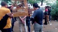 视频: 葫芦岛鸟市,QQ群212522667