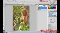 [PS]PS教程-photoshop cs6教程-PS影楼后期调色篇_标清
