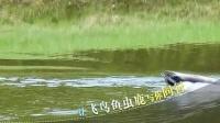 卓悦•爱尚高尔夫毛里求斯旅游推介片