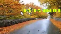 20140604海洋老师会声会影第十六课 片片枫叶情文字效果6