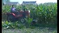 新型药材芦苇大豆收割机小型玉米秸秆收割机作业现场视频