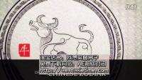 VIP41AE模板CS4 中国风格12生肖水墨风格贺年片头