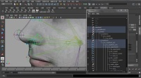 Maya教程 动画绑定 头部表情绑定视频6