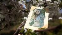A0538 清新春暖花开温馨唯美相片浪漫婚礼电子相册展示AE模板