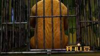 开心豆:《熊出没 光头特种兵(下)》20131011VA0_标清
