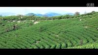 《梦想记录者》第二期  安吉白茶 纪录片
