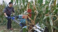 玉米收割机玉米割晒机 小型割晒机 玉米小型收割机