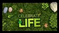 绿色草地花藤蝴蝶文字特效AE模板素材 公益环保绿色宣传片视频MV[