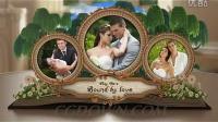 婚礼,贺卡,时尚,浪漫,典雅,欧式,相册AE模板视频素材,来自西橘网