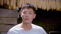豆腐西施杨七巧 10