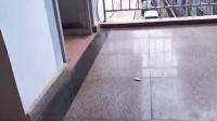 海口市龙华区遵谭镇政府豪华办公室成了摆设,电脑摆放数百台无工作人员上班。