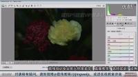 敬伟ps视频教程 B06-32调色课程-了解ACRaw