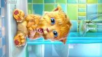 唐山味的汤姆猫