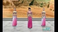 肚皮舞入门教学视频 下载_大班印度舞蹈_肚皮舞价格