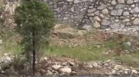视频: 捷安特游玩老界岭