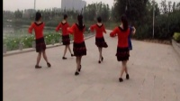 新郑奇强带刺的红玫瑰 广场舞 印度美女