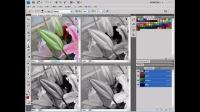 [PS]photoshop教程photoshop破解版下载photoshop教程视频 分离通道