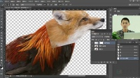 [PS]photoshop教程毛发头发抠图技巧和图像合成技巧教程