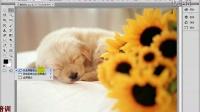 [PS]Adobe Photoshop CS6 中文视教程 9  切换屏幕显示模式