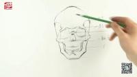 美术艺考 头骨结构分析(一)——张志明 徳艺艺术教育
