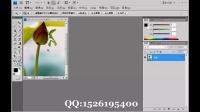 ps  ps教程  ps软件 ps下载 在线ps ps抠图 缩放与移动视图