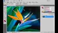 [PS]ps平面设计教程photoshop基础教程ps淘宝美工教程使用魔棒工具