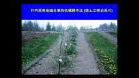 果园土壤的健康状况如何影响中国的苹果果农
