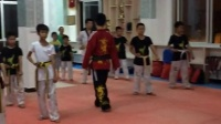 跆拳道下防教学