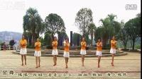 青青广场舞小苹果 最简单广场舞 歌曲免费下载