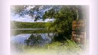 视频: 水健康自来水现壮美的净水机(嵊州)QQ1521170175