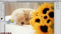 [PS]Adobe Photoshop CS6 中文视教程 9  切换屏幕显示模式.vob