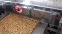 MVI_9885花生糖切块机/切糖机,花生酥切块机,花生糖成型切块机