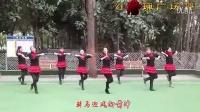红玫瑰广场舞(原香草)_高清