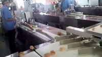 瑞普华法式面包理料包装线