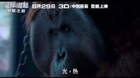 猩球崛起2:黎明之战 中文预告片(3)
