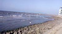 金沙滩海浪  VID_20140825_164552      银河系的红狐   QQ853534824