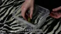 【环球趣闻】:蜗牛美容法 最新美容护肤法 面膜