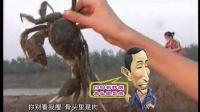 视频: 3好韵味-横行霸道的沅江大闸蟹_标清(纯手工天然护肤品,打造中国第一品牌QQ:2773427933)