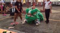 香港姜氏金龍醒獅團獅子开光儀式