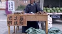 胡杨女人 09