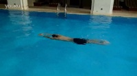 蛙泳:4.5怎样才能游得快--速度力量都起来