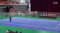 河北省第十四届运动会武术套路比赛陈世龙国际长拳