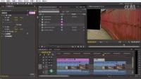 [PRCC高级调色教程]第20节-逐帧动画设置轨道遮罩键