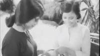 tra giang CHXHCN chituhau 1962 hcm tphcm avi
