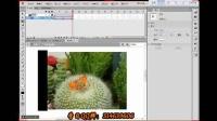 FLASH遮罩动画-Flash新手入门基础视频教程案例