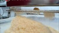 欧罗巴单头奶酪粉碎机芝士处理加工披萨机器