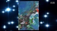 太原梦乐琴行:著名抽象派画家郑傅安与德国诗帝堡钢琴激情碰撞