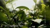 茶,一片树叶的故事(四) 141002